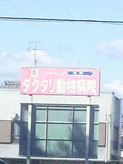 魚河岸食堂!!_f0228680_15415877.jpg