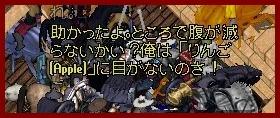 b0096491_0353638.jpg
