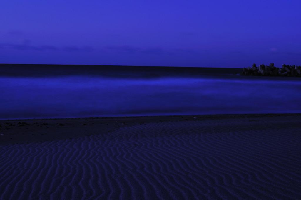 BLUE_d0119505_135505.jpg