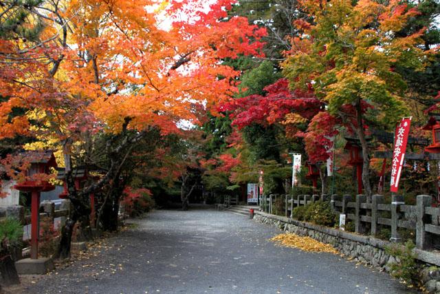 紅葉スタート 亀岡 鍬山神社_e0048413_19501935.jpg