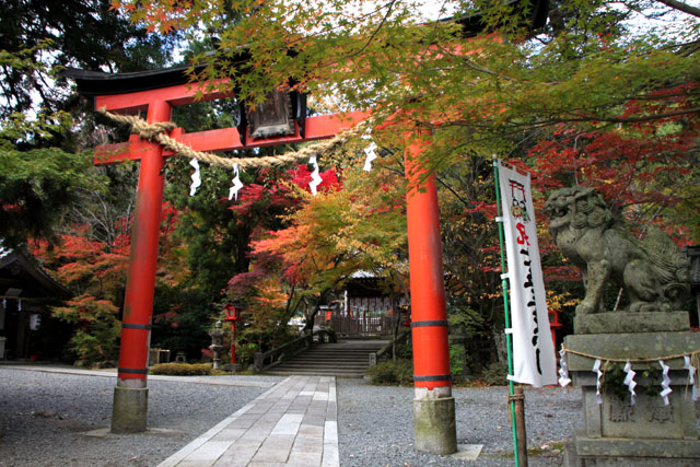紅葉スタート 亀岡 鍬山神社_e0048413_19503296.jpg