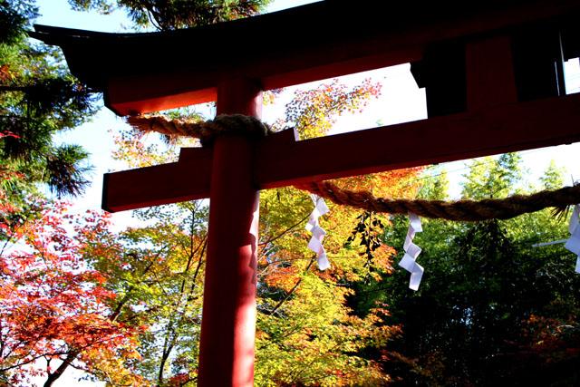 紅葉スタート 亀岡 鍬山神社_e0048413_19504692.jpg