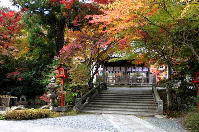 紅葉スタート 亀岡 鍬山神社_e0048413_1951157.jpg