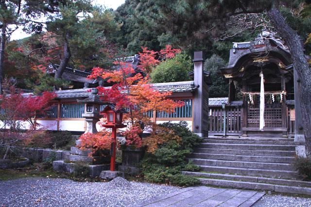 紅葉スタート 亀岡 鍬山神社_e0048413_19511675.jpg
