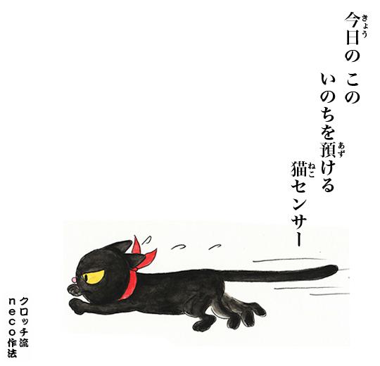 今日のこの 命をあずける 猫センサー_f0193056_13535953.jpg
