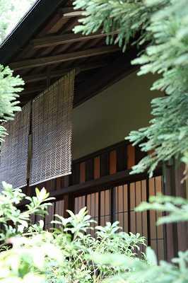 菊花壇展_d0065558_173416.jpg