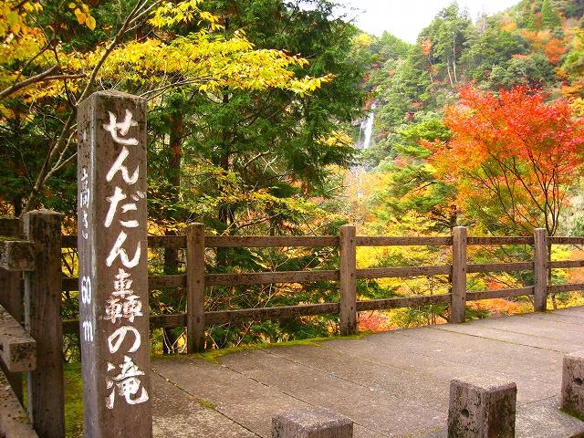 五木村から五家荘せんだん轟の滝...