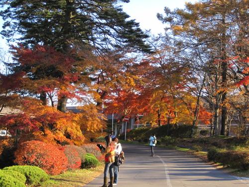 紅葉お散歩_f0236260_17121610.jpg