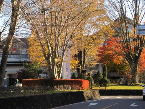紅葉お散歩_f0236260_17162958.jpg
