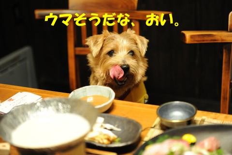 d0043478_0213314.jpg