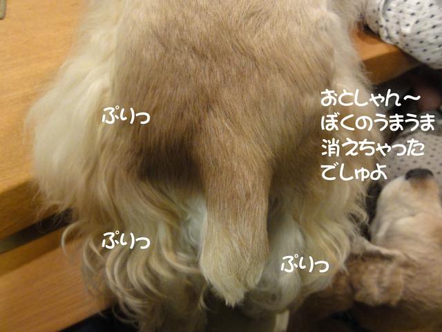 f0218182_16502598.jpg