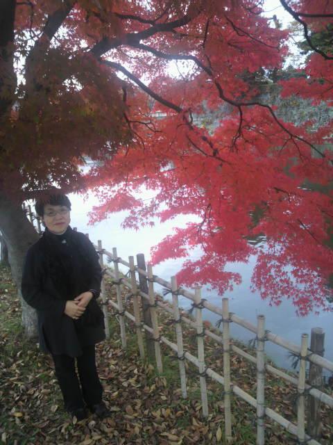 秋の紅葉_c0145608_15272092.jpg