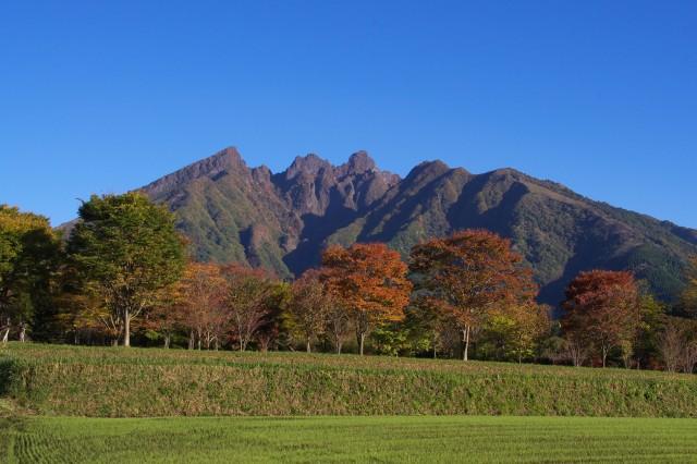 ニャンコ岳_d0177220_929208.jpg