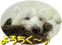 f0084422_0435565.jpg