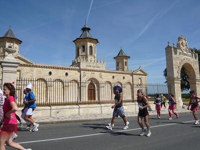 明日11/13(土)メドックマラソン2010が「世界ふしぎ発見!」で紹介_d0113725_23491111.jpg