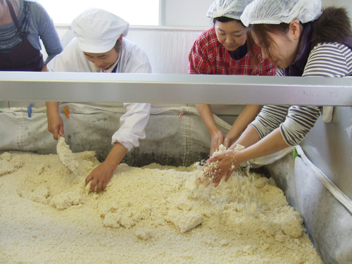 味噌作り体験_b0206253_14411123.jpg