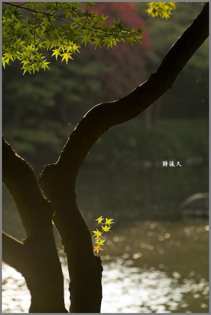 f0146161_23252640.jpg