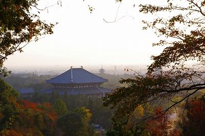 奈良の秋_c0207890_1403066.jpg