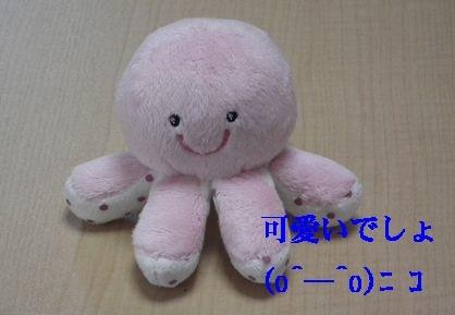 オフ会に行ってタコさん人気♪_a0161111_19221440.jpg