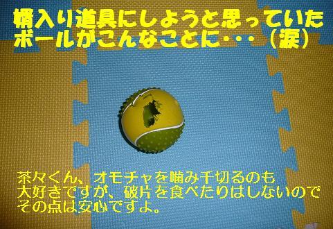 f0121712_11295352.jpg