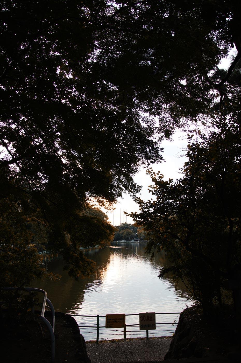 富士見池 5_e0216133_094178.jpg