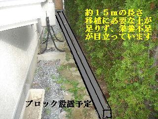 f0031037_19155934.jpg