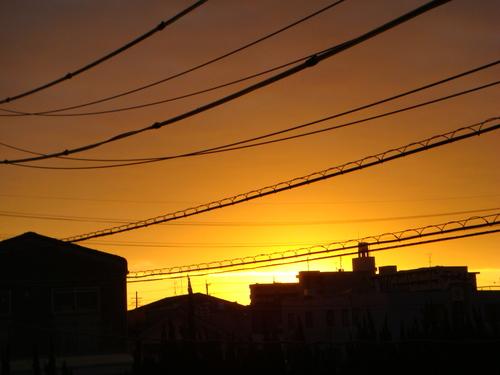 朝日が昇る_b0097645_157733.jpg