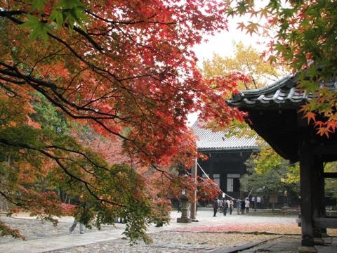 秋の旅行_c0113948_12401045.jpg