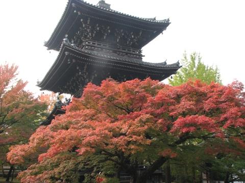 秋の旅行_c0113948_12403467.jpg