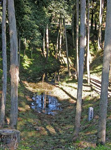 11月13日 白井宿の桜紅葉と白井城趾_a0001354_2245281.jpg
