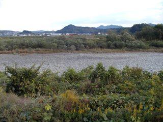 11月9日 涸れた今川を見る会-2_f0197754_0465685.jpg