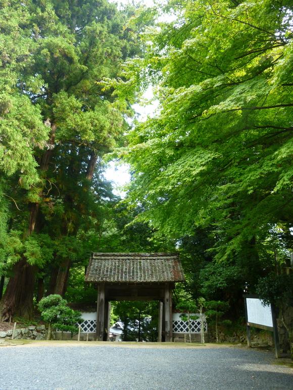 津和野町最終日、永明寺(ようめいじ)_c0180686_18362287.jpg