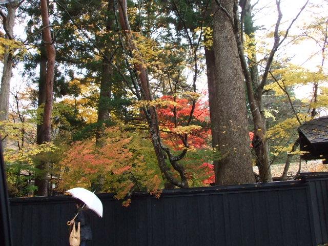 shigekoさん、秋田の旅 その5_f0019498_23255212.jpg