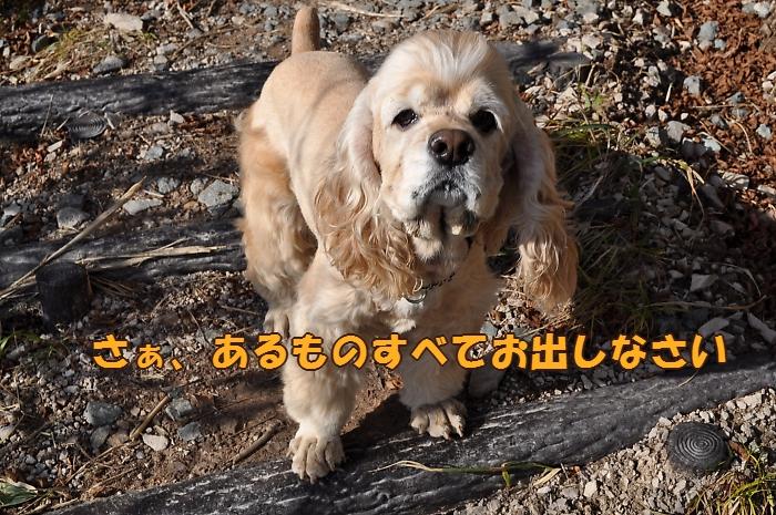 b0067012_05756.jpg