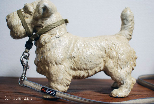 オススメ!犬用おもちゃとグッズのラインナップ_c0099133_13581932.jpg