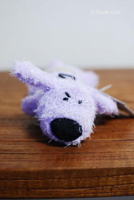 オススメ!犬用おもちゃとグッズのラインナップ_c0099133_516593.jpg