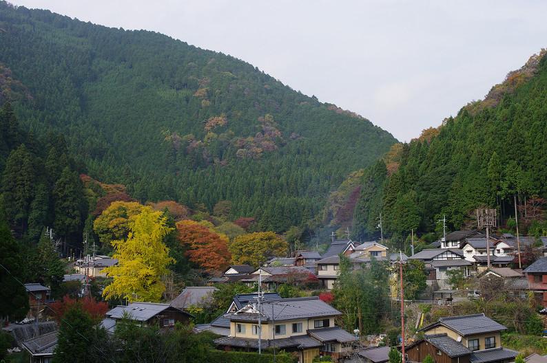 京都の紅葉2010 ~叡山電車・二ノ瀬駅~    と..._f0152550_22152718.jpg