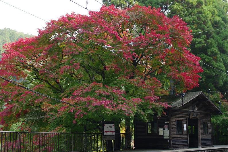 京都の紅葉2010 ~叡山電車・二ノ瀬駅~    と..._f0152550_22153468.jpg
