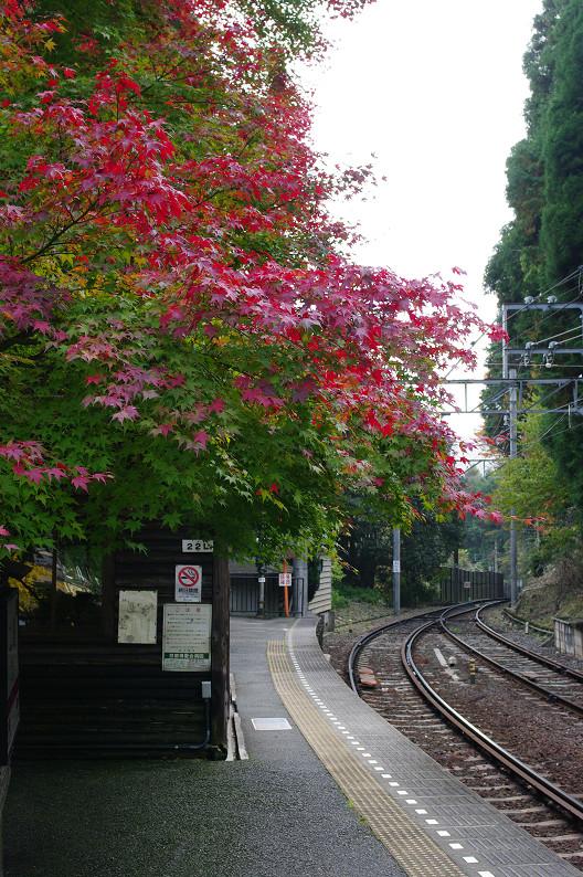 京都の紅葉2010 ~叡山電車・二ノ瀬駅~    と..._f0152550_22154477.jpg