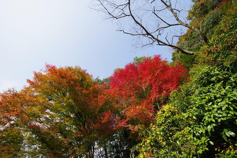 京都の紅葉2010 ~叡山電車・二ノ瀬駅~    と..._f0152550_22171446.jpg