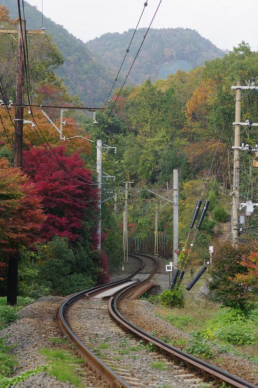 京都の紅葉2010 ~叡山電車・二ノ瀬駅~    と..._f0152550_22172973.jpg
