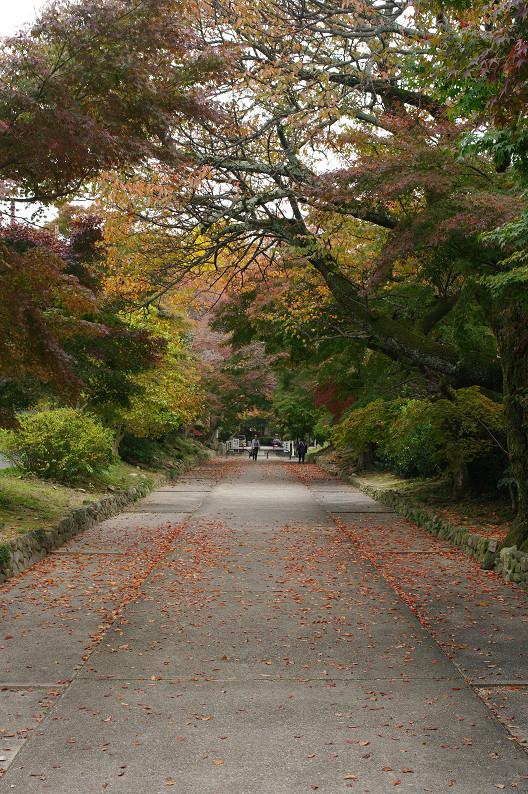 京都の紅葉2010 ~叡山電車・二ノ瀬駅~    と..._f0152550_22181638.jpg