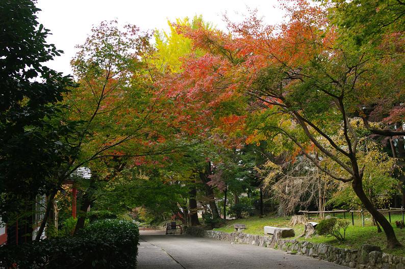 京都の紅葉2010 ~叡山電車・二ノ瀬駅~    と..._f0152550_22182194.jpg