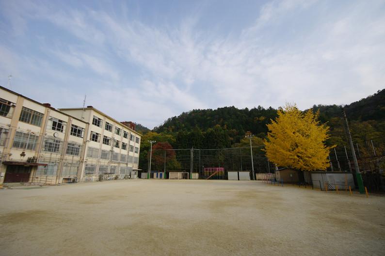 京都の紅葉2010 ~叡山電車・二ノ瀬駅~    と..._f0152550_2218733.jpg