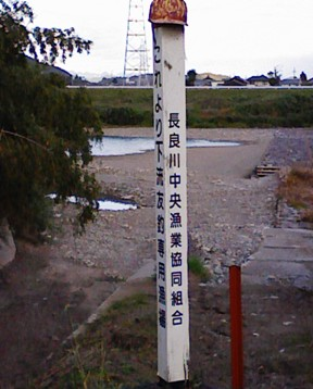 11月9日 涸れた今川を見る会-3_f0197754_1144935.jpg