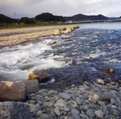 11月9日 涸れた今川を見る会-3_f0197754_1181148.jpg