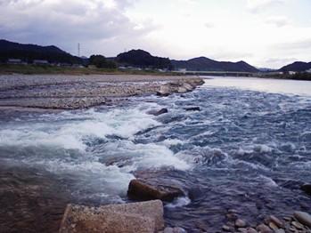 11月9日 涸れた今川を見る会-3_f0197754_1184413.jpg