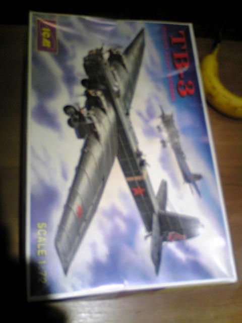 ウクライナICMのTB-3爆撃機_f0021855_1721449.jpg