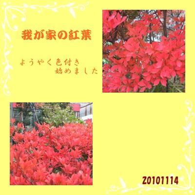 f0150470_17475186.jpg