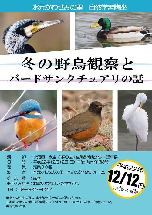 冬の野鳥観察会 申し込み開始しました!_d0121678_9374735.jpg